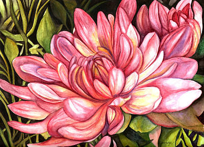 Mums Painting - Pink Chrysanthemum by Elaine Hodges