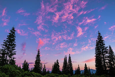 Photograph - Pink Cloud Sunset Mount Shasta California by Lawrence S Richardson Jr