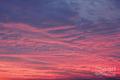 Digital Art - Pink Clouds by Donna Munro