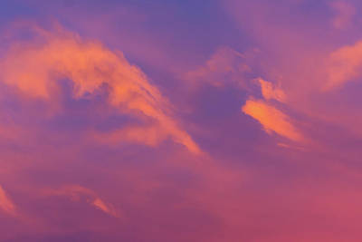 Photograph - Pink Clouds by Douglas Killourie