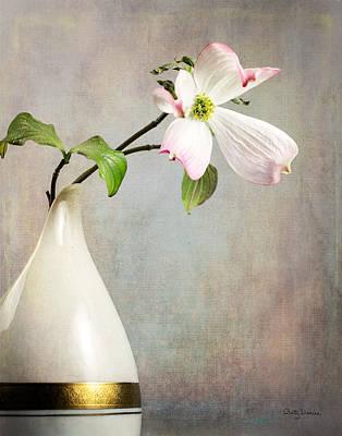 Pink Cornus Kousa Blossom In Creamer Art Print