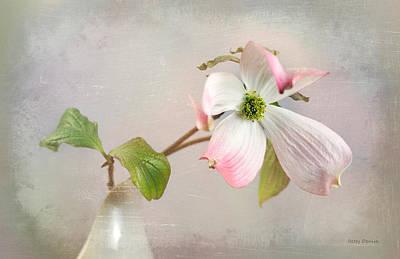 Pink Cornus Kousa Dogwood Blossom Art Print by Betty Denise
