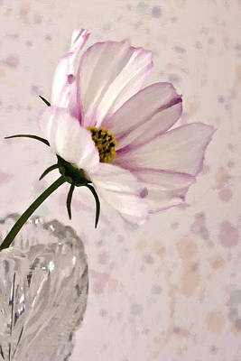 Country Living Magazine Style Photograph - Pink Cosmo - Digital Oil Art Work by Sandra Foster