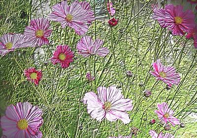 Photograph - Pink Cosmos by Nareeta Martin
