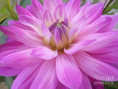 Mixed Media - Pink Dahlia Flower Soft Effect by Rose Santuci-Sofranko
