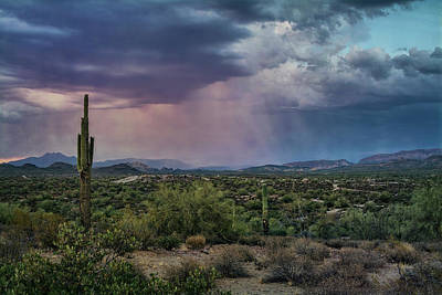 Photograph - Pink Desert Rains  by Saija Lehtonen