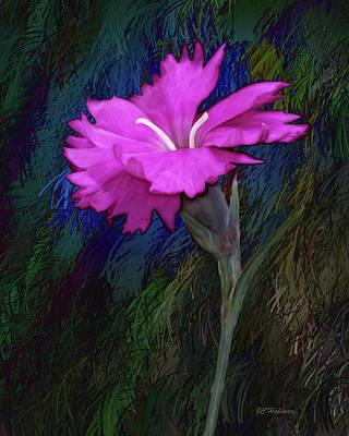 Pink Dianthus  Art Print by Joe Halinar