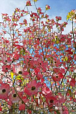 Photograph - Pink Dogwood by Jodie Marie Anne Richardson Traugott          aka jm-ART