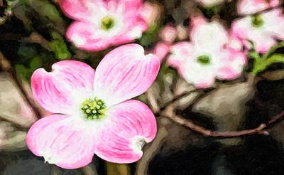 Digital Art - Pink Dogwood Painting by Jill Lang