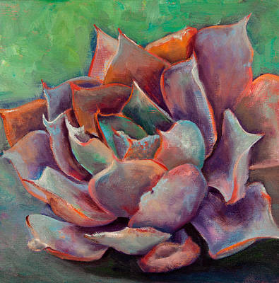 Pink Echeveria Print by Athena  Mantle