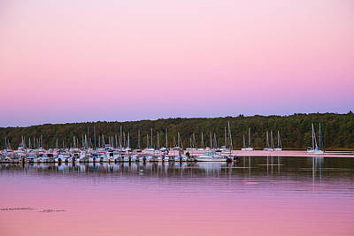Photograph - Pink Evening by Karol Livote