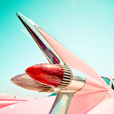 Pink Fin Art Print by David Waldo