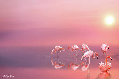 Photograph - Pink Flamingos by Lilia D