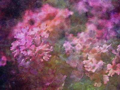 Wild Weather - Pink Florets 9607 IDP_2 by Steven Ward