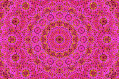 Digital Art - Pink Flower Mandala by Janusian Gallery