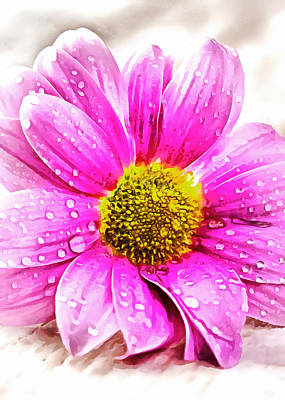 Photograph - Pink Flower by Munir Alawi