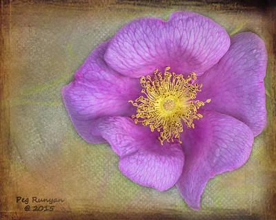 Photograph - Pink Flower by Peg Runyan