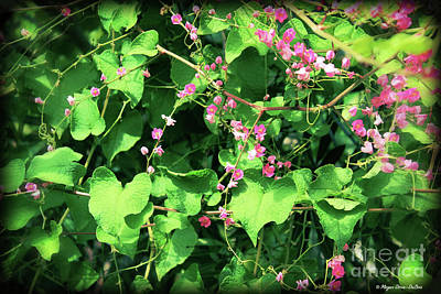 Photograph - Pink Flowering Vine2 by Megan Dirsa-DuBois