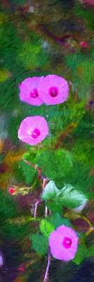 Photograph - Pink Flowers 102310 by David Lane