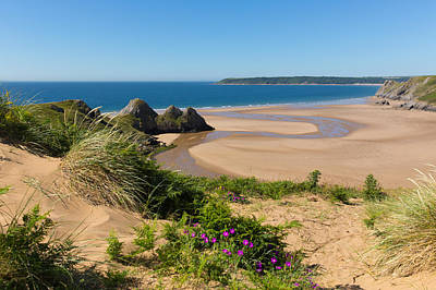 The Gower Photograph - Pink Flowers The Gower Coast Three Cliffs Bay Wales Uk Beautiful Welsh Holiday Destination  by Michael Charles
