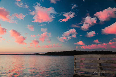 Photograph - Pink Fluff In The Air by E Faithe Lester