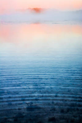 Pink Fog At Sunrise Art Print by Shelby  Young