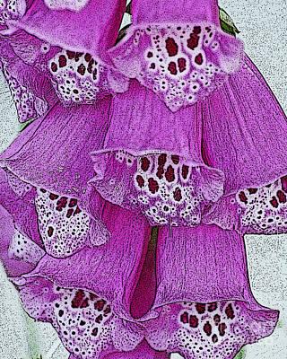 Pink  Foxglove Art Print by Diane E Berry