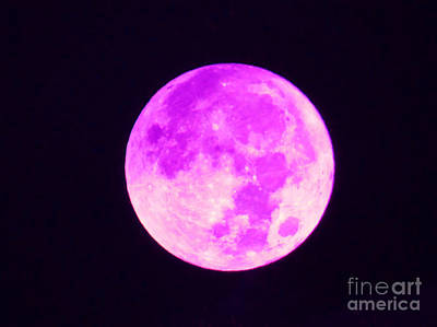Photograph - Pink Full Moon by D Hackett