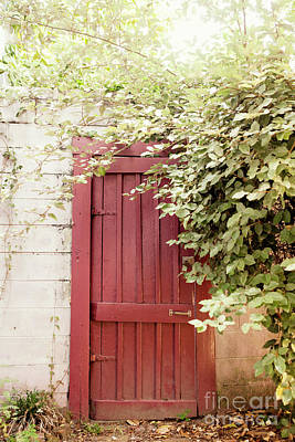 Photograph - Pink Garden Door by Heather Green