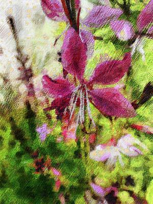 Photograph - Pink Gaura by Leslie Montgomery