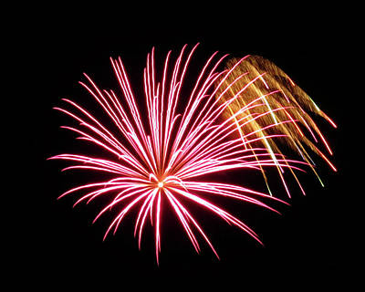 Photograph - Pink Gold Fireworks by Kyle J West