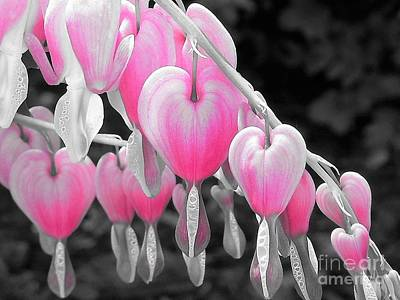 Photograph - Pink Hearts by Chad and Stacey Hall