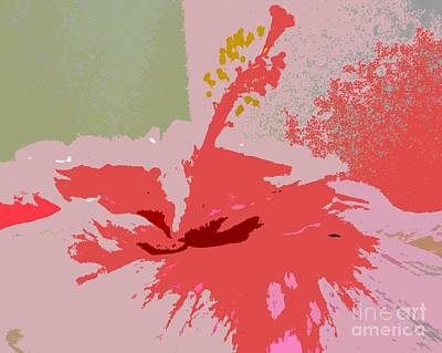 Photograph - Pink Hibiscus Abstract by Barbie Corbett-Newmin