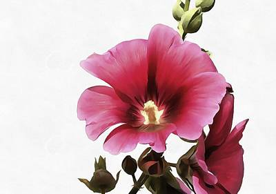 Pink Hollyhock Art Print by Tracey Harrington-Simpson