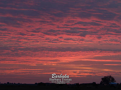 Photograph - Pink Hues Sunrise #5107 by Barbara Tristan