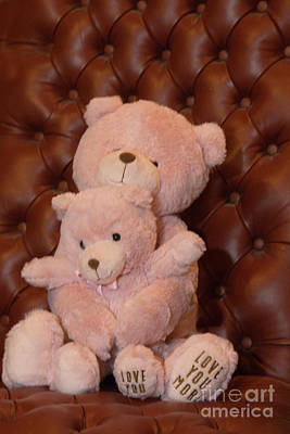 Hallmark Photograph - Pink Hugging Bears 2 by Linda Phelps