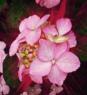 Botanicals Mixed Media - Pink Hydrangea by Cathie Tyler