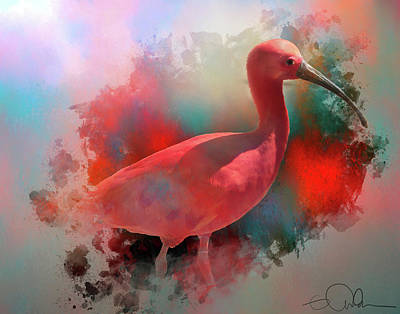 Digital Art - Pink Ibis by Gloria Anderson