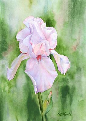Pink Iris Art Print