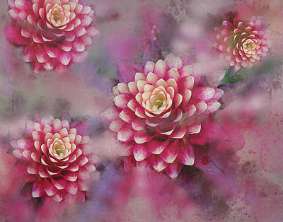 Mixed Media - Pink by Judi Saunders