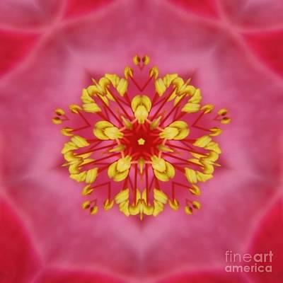 Digital Art - Pink Kaleidoscope by D Hackett