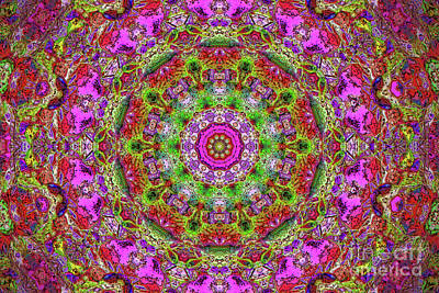 Digital Art - Pink Kaleidoscope Fall Branches by Donna Munro