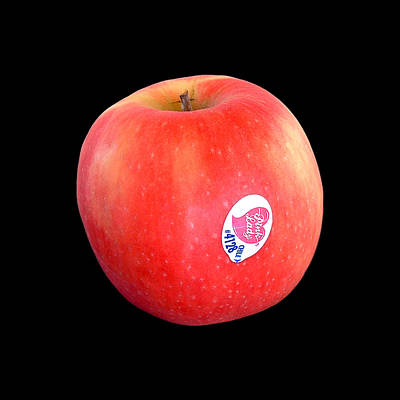 Photograph - Pink Lady Apple by Stan Magnan