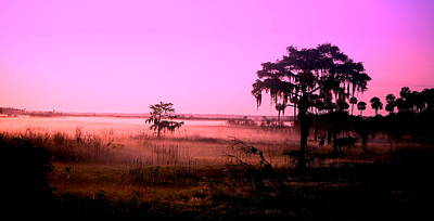 Photograph - Pink Lagoon by Emily Stauring