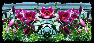 Digital Art - Pink Lilies Fusion by Will Borden
