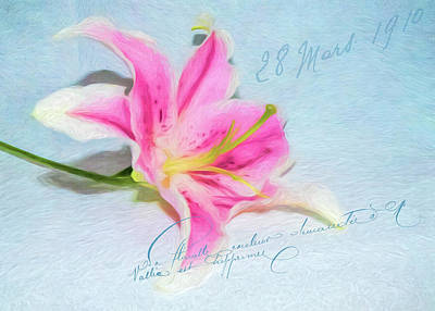Photograph - Pink Lily by Cathy Kovarik