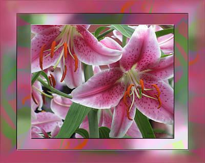 Pink Lily Design Print by Debra     Vatalaro