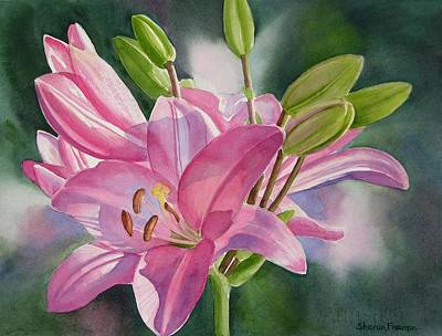 Floral Painting - Pink Lily With Buds by Sharon Freeman