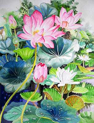 Painting - Pink Lotus And White Water Lilies by Vishwajyoti Mohrhoff