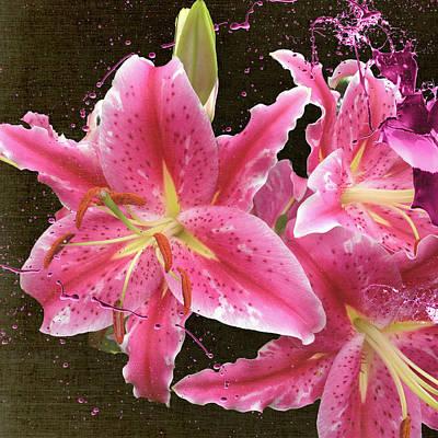 Digital Art - Pink by M Montoya Alicea